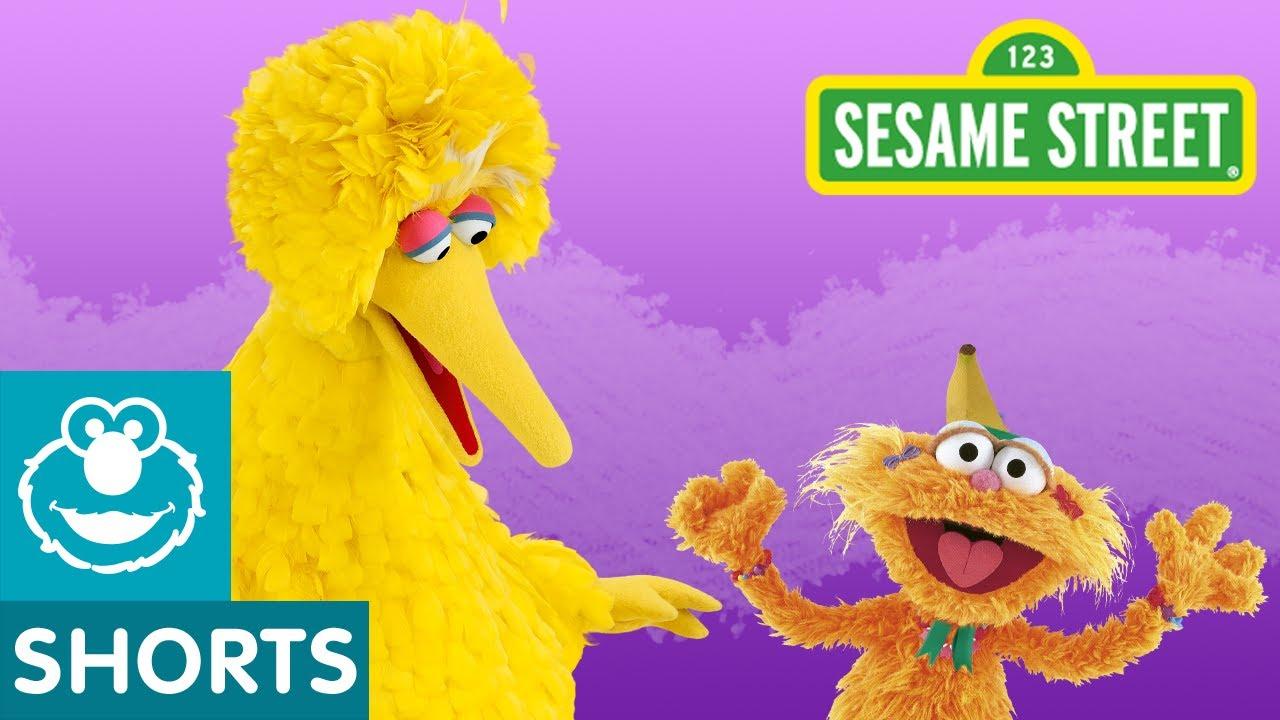Sesame Street Big Bird Asks Zoe A Question
