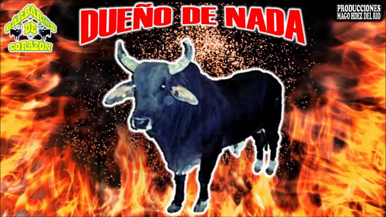 El toro forex login