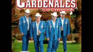 Cardenales De Sinaloa - Chema Arroyo