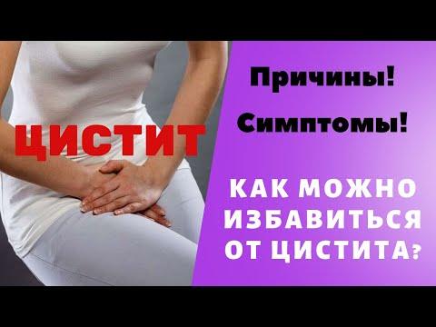 Цистит, симптомы цистита, причины цистита, цистит у женщин.  Воспаление мочевого пузыря WebWellness