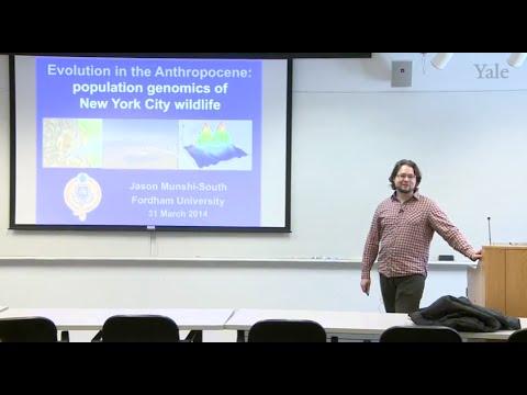 Evolution in the Anthropocene: Population Genomics of NYC Wildlife