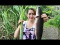 Yummy Fish Cooking With Young Banana Tree Sour soup - Yummy Fish Cooking - Cooking With Sros