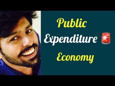 PUBLIC EXPENDITURE : Civil Service Lectures Economics