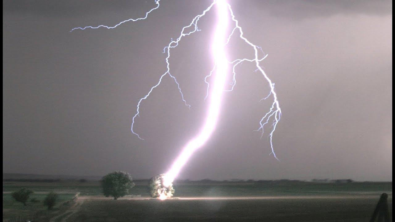 lightning striking tree in 4k tree catches on fire