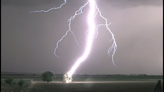 Lightning Striking Tree in 4K - Tree Catches on Fire !!!