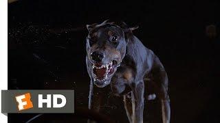 Fletch (5/10) Movie CLIP - The Doberman (1985) HD