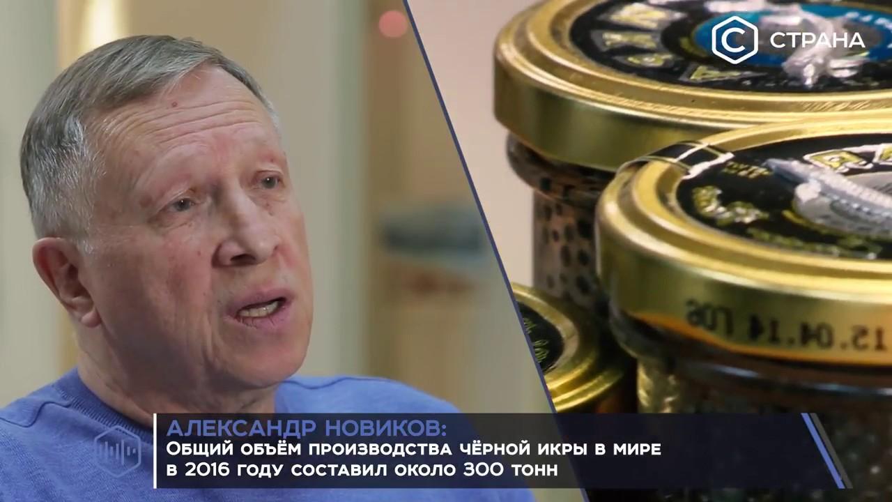 Русский икорный дом официальный сайт