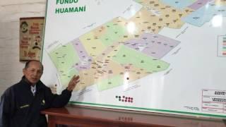 Magnation Peru Farm Testimonial in Spanish
