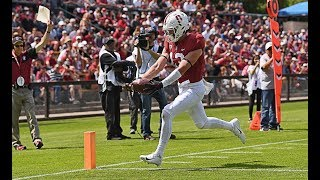 Recap: Stanford football provides preview of 2019 season with Cardinal and White Spring Game