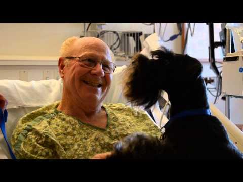 Therapy dog Muka visits Legacy Salmon Creek