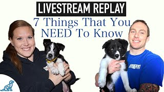 7 Things Puppy Owners Need To Know  Puppy Owners Guide