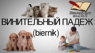 Польский язык от А ДО Ż - Винительный падеж (10 урок)