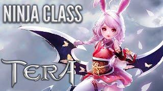 TERA NINJA CLASS