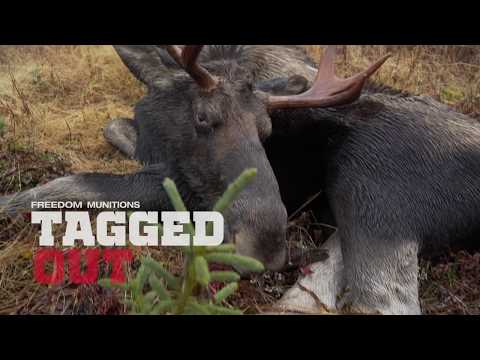 Tagged Out in Action - Moose