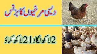 How to start Hens Egg Business in Pakistan -- Best Business Idea in Pakistan