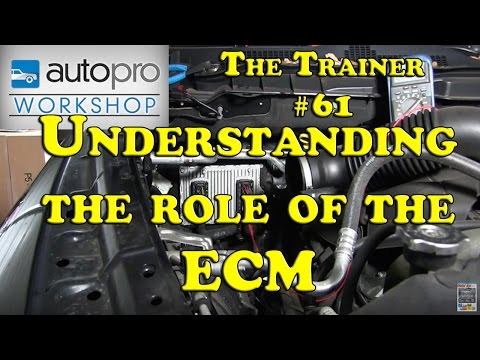 The Trainer #61 - DTC Diagnostics Pt1:  How The ECM Thinks