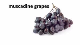 Виноградные косточки помогут лечить рак