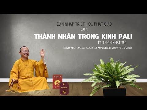 Dẫn nhập triết học PG: Thánh nhân trong kinh Pali - TT. Thích Nhật Từ