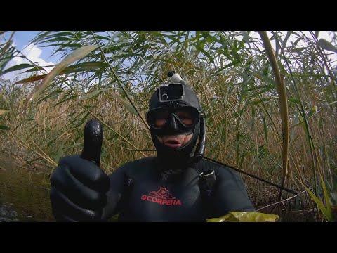 ПОДВОДНАЯ ОХОТА На какие камеры я снимаю свою подводную охоту