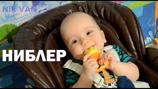 Ниблер - сеточка для прикорма, контейнер для первого прикорма малыша - nibbler Nik VAN