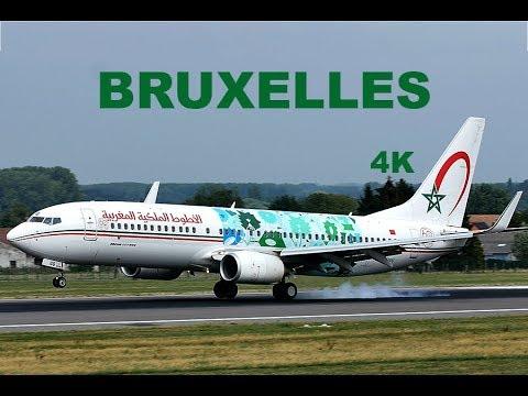 Landings @ Brussels Airport BRU Plane Spotting  - 4K