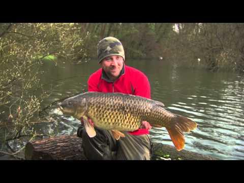 Thinking Tackle Season 5 Show 5 - Carp Fishing At Chilham Mill Kent - Trailer
