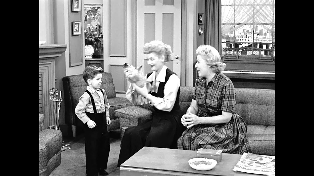 Little ricky gets a dog youtube for Who played little ricky in i love lucy