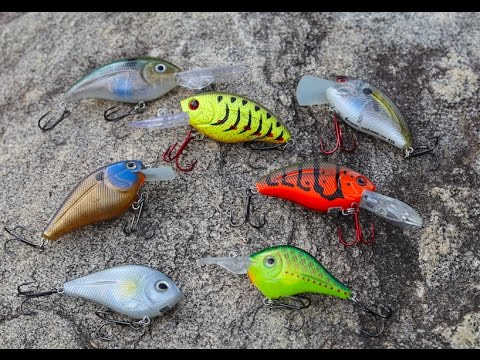 Fishing With Electronic Fishing Lures!! (Livingston Lures)