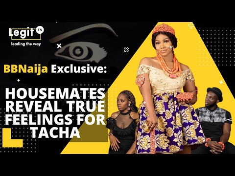 bbnaija-exclusive:-evicted-housemates-reveal-their-true-feelings-about-tacha|-legit-tv