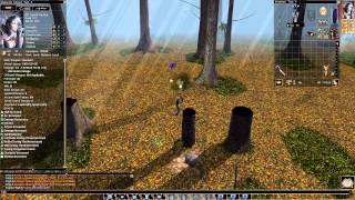 Neverwinter Nights, Classes: Druid, Shifter, All Shape, Review(Russian Postscoring)