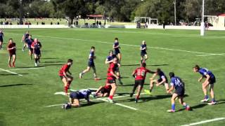 Terrace Under 15 A's rugby 2015