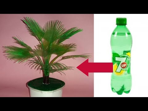 how to make plastic bottle tree || Crafts With Plastic Bottle || Waste Recycled Craft Ideas