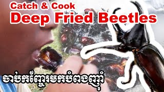 Eating Fried Beetles ចាប់កញ្ចែរមកបំពងញ៉ាំ Catch and cook
