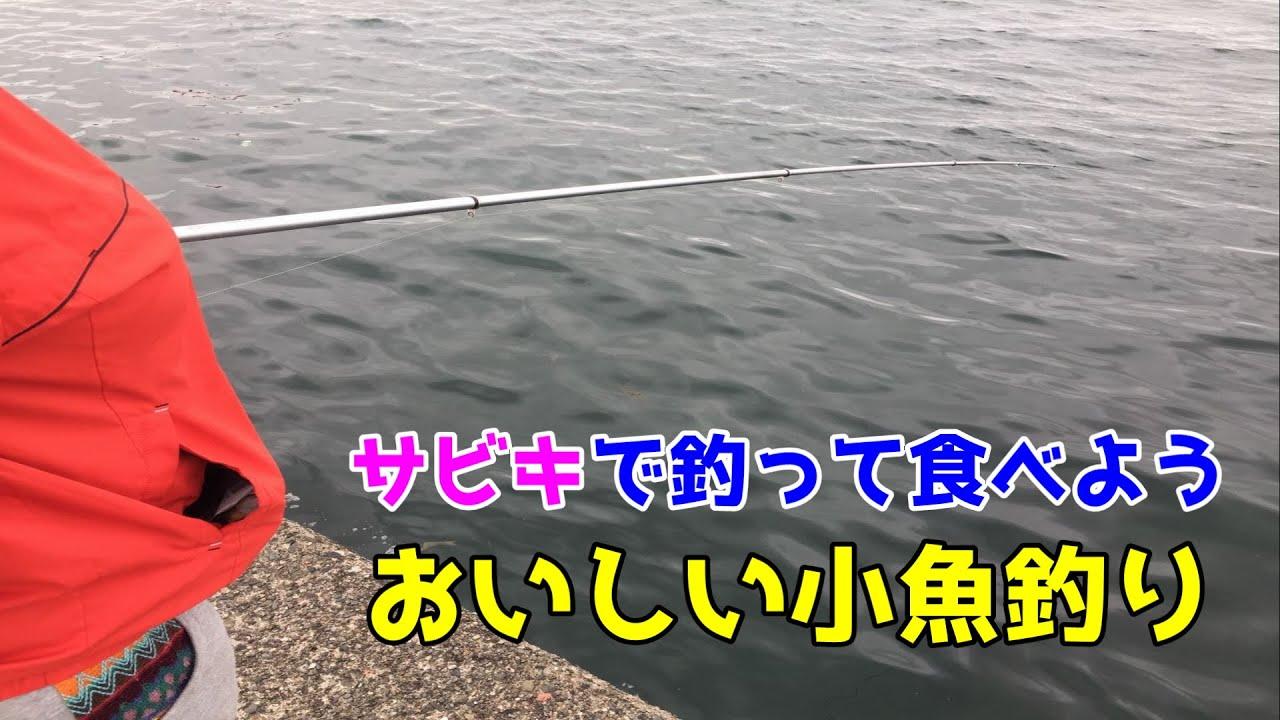 サビキで釣って食べよう おいしい小魚釣り