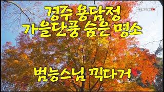 [경주 용담정] 가을단풍 최고 명소. 범능스님 노래 끽…