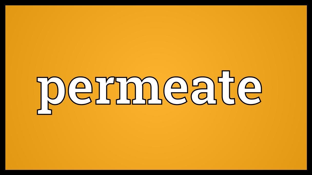Permeate Definition