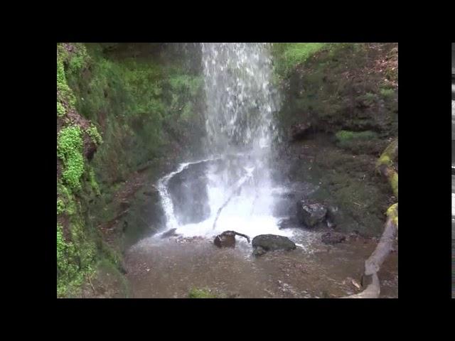 The Craigie Linn Waterfall, Glen Park, Paisley