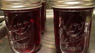 Hibiscus Jelly - How to Make and Can  | Useful Knowledge