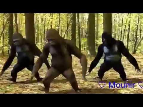 Hek Lili Nifi _ حك ليلي نيفي - Barbapappa ( video animation )