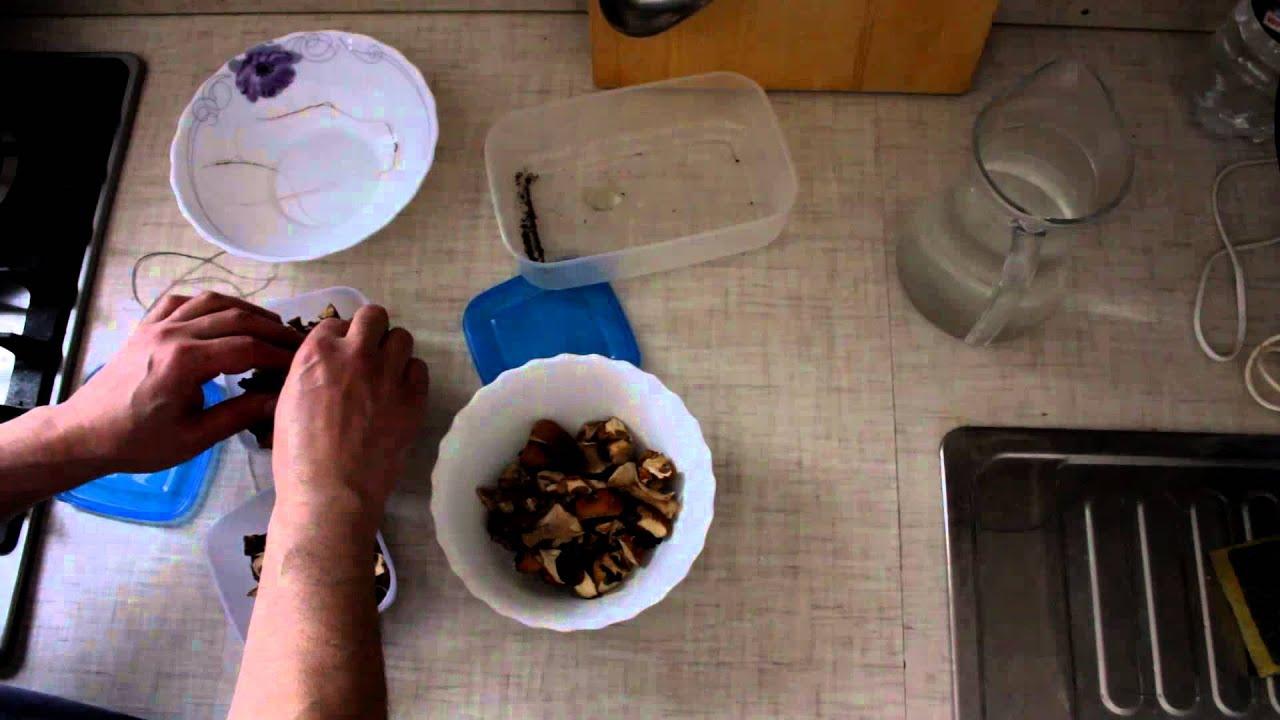 Выращивание белых грибов на даче. ч.1 - YouTube