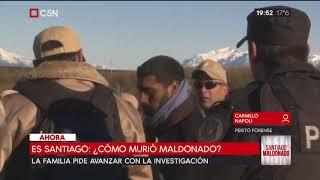 Caso Santiago Maldonado: Habla el perito forense Carmelo Napoli