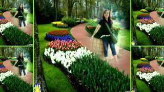 Download Video Bojo Simpenan (magdalena)by Bulan Jingga MP3 3GP MP4