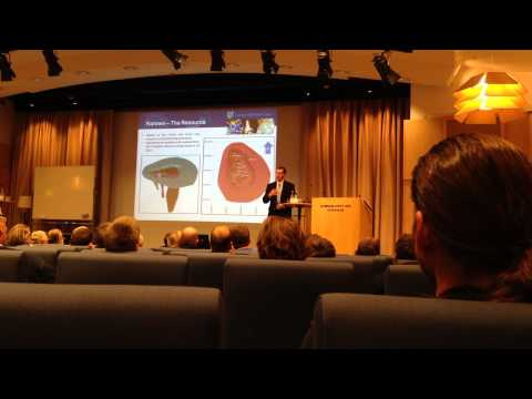 CEO William Lamb Lucara Diamond Presentation Stockholm November 2013