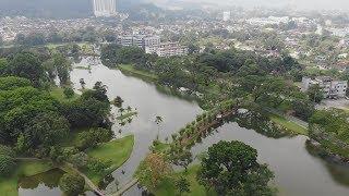 Taiping 2019