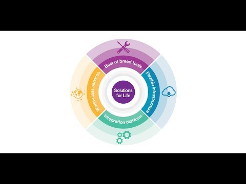 Solutions for Life: How life insurers can transform their risk and actuarial processes