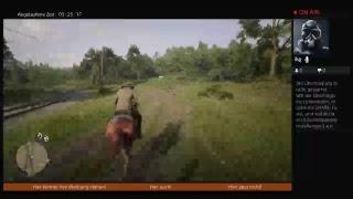 Red Dead Redemption 2 Online Reiten bis der Arzt kommt