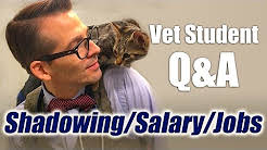 Vet Student Q&A -  Different Jobs, Career Salary, and Shadowing a Veterinarian