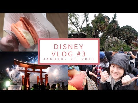 Disney Vlog Day 3 | Flight of Passage, Insane Lines in Pandora, + Beverly Soda | Jan. 23, 2018