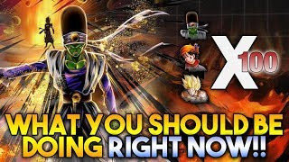 WHAT YOU SHOULD BE DOING RIGHT NOW IN DRAGON BALL LEGENDS!