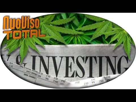 Green Rush - Wirtschaftswunder durch Cannabislegalisierung
